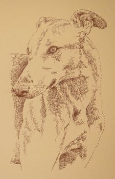 Greyhound Two: Dog Art Portrait by Stephen Kline - art drawn entirely from the words Greyhound. He also can add your dog's name into the lithograph. http://drawdogs.com/product/dog-art/greyhound-two-dog-portrait-by-stephen-kline/drawdogs.com : drawdogs.com