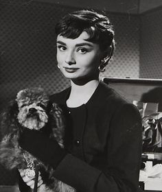 Audrey Hepburn photographed with the poodle for Sabrina