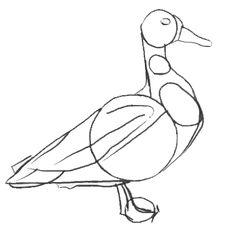 Wenn Sie eine Ente einfach zeichnen wollen, dann sind Sie genau richtig gekommen. Schauen Sie mal diese Anleitung und probieren Sie selber.