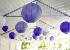 Purples, whites and yellows... dress up a tent.