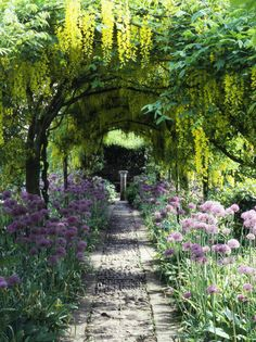 Garden :  Okay, All I want is a Pergola with some shade (wisteria would work beautifully), a fountain, a fireplace or built in pit, a swing, a place to grow roses, an area for raised gardening beds, a lovely arch with a gate and some climbing Eden roses, a peach tree, a lilac bush, some hydrangeas, a built-in BBQ an area to sit with a glass of wine or eat....is that asking so much?!!!