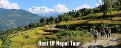 Explore Nepal's beauty Exceptional tours experience in Nepal Mingle with the world's heritage sites Two days chitwan National park excursion One and half day white water rafting Three days easy trek with excellent mountain view A comb