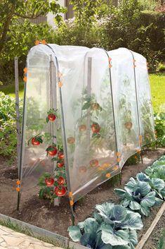 Vegetable garden: the work of spring - garden landscaping Garden Trellis, Garden Beds, Garden Farm, Hydroponic Farming, Potager Bio, Greenhouse Gardening, Gardening Tips, Mini Greenhouse, Organic Gardening