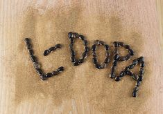 Because L-DOPA-rich food sources, like mucuna, are known to increase dopamine concentrations in the brain and central nervous system, supplementation can help to boost L-DOPA needed to replenish dopamine deficiency, common in those recovering from adrenal burn-out and/or addictive substances.    Herbs, like mucuna, are best when used in conjunction with other Ayurvedic approaches which may also include modifying one's diet, lifestyle choices and activity levels.