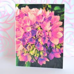 Happy happy joy joy.  This design has been THE most puchased this season at craft shows. Who doesn't love pretty hydrangeas??!!! I look forward to mine every summer.  4x6 cards are available in single ($4.50) or packs of 10 ($27.50). I'll place this in the online shop tonight. Send me a DM if you  don't want to wait.  http://ift.tt/2ma2a2C  #fenimorerutland #mycreativebiz  #cards #snailmail #etsy