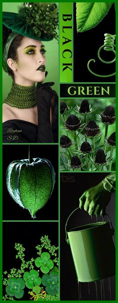 '' Black & Green '' by Reyhan S.D.