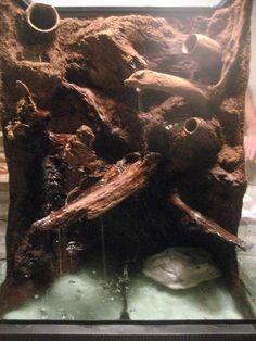 Discover how to make a terrarium paludarium vivarium for reptiles, dart frogs, lizards and learn terrarium basics. Terrarium Diy, Water Terrarium, Gecko Terrarium, Terrarium Reptile, Aquarium Terrarium, How To Make Terrariums, Reptile Zoo, Reptile House, Reptile Cage
