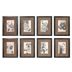 Set of 8 Framed Burlap and Botanical Prints from Shades of Light...would love to have these!