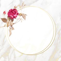 Round flower frame on beige marble background illustration | premium image by rawpixel.com / Adj / HwangMangjoo Framed Wallpaper, Flower Background Wallpaper, Flower Backgrounds, Background Patterns, Floral Banners, Floral Logo, Illustration Blume, Beige Marble, Picture Logo