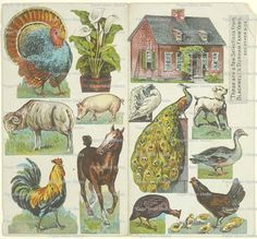 Rare Vintage Farmyard Collage with Horse Rooster Pig by joapan
