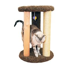 With its many textured surfaces, this multilevel cat condo provides your cat with hours of entertainment. This kitty condo is built with three posts and a soft carpeted top level, creating numerous spaces for your beloved pet to explore.