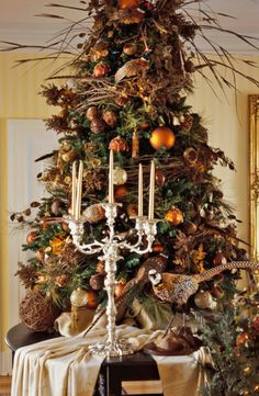 Love the colors used on this beautiful nature tree..........51 Simple Holiday Decorating Tips | Traditional Home