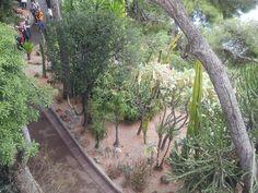 Saint-Martin Gardens - Monaco-Ville, Monaco