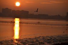 Sunrise Over San Francisco Bay 038 Photo By Michael Kappel