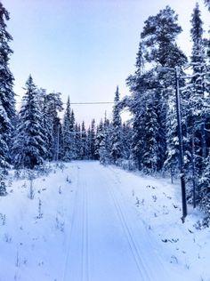 Skiing in Äkäslompolo / Lapland / Finland  .  Saariselkä activities http://www.saariselka.com/individual/activities