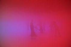 fogroom
