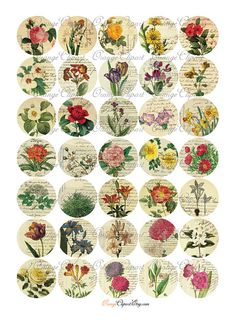 Beautiful French Ephemera Collage Sheet