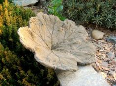 Cement Leaf Casting for the Garden