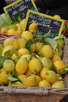 Citrons de Menton--love the look of these market lemons!