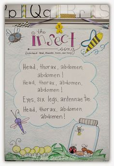 the Bug Deal What's the Bug Deal? Love this Head Thorax Abdomen song and other anchor chart ideas from The First Grade Parade!What's the Bug Deal? Love this Head Thorax Abdomen song and other anchor chart ideas from The First Grade Parade! 1st Grade Science, Kindergarten Science, Science Classroom, Teaching Science, Kindergarten Centers, Classroom Setup, Classroom Displays, Teaching Ideas, Insect Activities