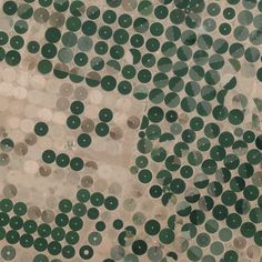 6/16/2015 Center-pivot irrigation Wadi As-Sirhan Basin, Saudi  Arabia. Water is mined from depths as great as one kilometer (~3,000 ft), pumped to the surface, and evenly distributed by sprinklers that rotate 360 degrees. Spurred by a government effort to strengthen its agriculture sector, cultivated land in the country grew from 400,000 acres in 1976 to more than 8 million acres by 1993. The diameter of the fields you see here are approximately three kilometers (1.9 miles) across.
