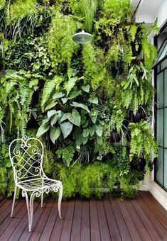 Fabulous DIY Vertical Garden Design Ideas Do you have a blank wall? do you want to decorate it? the best way to that is to create a vertical garden wall inside your home. A vertical garden wall, also called a… Continue Reading → Magic Garden, Big Garden, Indoor Garden, Home And Garden, Garden Art, Garden Swings, Easy Garden, Small Jungle Garden Ideas, Garden In House