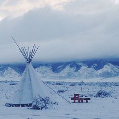 Hard to believe that just a few days ago, this was my home. Staying in different tiny houses has taught me that square footage is overrated. You can make anything a home as long as it provides you with the shelter you need. And as an added bonus, share that home and experiences with people that matter. #tinyhousemovement #tinyhouse #tipi #coloradolive
