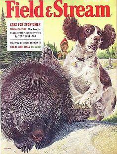 5 1958 Field Stream Magazine Full Page Winchester | eBay