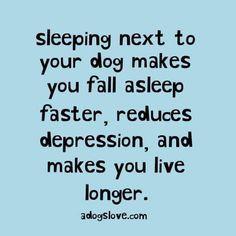 Sleeping next to my dog