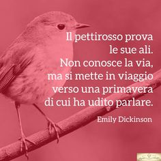 Emily Dickinson, Poem A Day, Oscar Wilde, My Mood, Wise Quotes, Thoughts, Love, Words, Frases