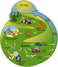 Biomass & Thermal Power: 25 Cutting-Edge Designs | WebEcoist