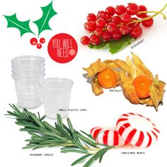 Add berries and rosemary to half-full plastic cups or ice cube trays and then top them off once they're frozen. Ideally use filtered water, . Christmas Party Drinks, Christmas Snacks, Winter Christmas, Winter Drinks, Summer Drinks, Festive Cocktails, Ice Ice Baby, Holiday Festival, Tips