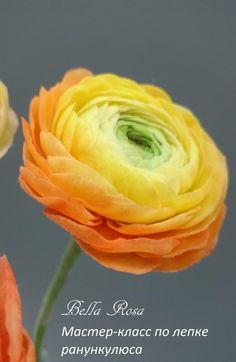 Дорогие друзья! Приглашаем вас на МК по лепке ранункулюса. Создается цветок, стебель, флокирование стебля, листья, а также, выполняется роспись. На МК вы научитесь составлять смесь из нескольких видов глин, которая абсолютно реалистично передаёт внешний вид лепестков и их тонкость и трепетность. Научитесь делать чашелистики, обкатывать стебель и прикреплять листья.