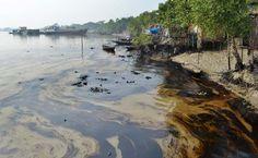 Oil spill in Bangladesh threatens aquatic animals