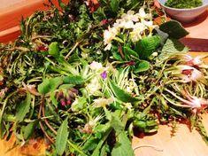 Questo e' un piccolo elenco di alcune erbe spontanee commestibili che crescono nei nostri campi o lungo i fossi. Come riconoscerle, alcune loro proprietà e come usarle in cucina. Nigella, Seaweed Salad, Vegetable Garden, A Food, Lawn, The Cure, Vegetables, Ethnic Recipes, Green