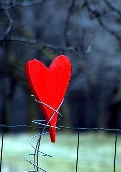Find images and videos about love, cute and red on We Heart It - the app to get lost in what you love. I Love Heart, With All My Heart, Key To My Heart, Happy Heart, Lonely Heart, Heart Beat, My Funny Valentine, Valentines Day, All You Need Is Love
