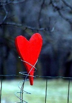 ** Heart