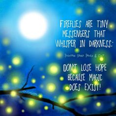 Fireflies are Tiny messengers That whisper In darkness..