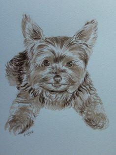 Portrait animalier à l'encre.  Réalisé sur commande d'après photographie.  www.virginiewibaux.com