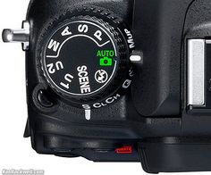 Nikon D7000 User's Guide Really interesting site