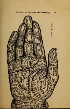 The science of palmistry and its relations to astrology and phrenology by Irene Smith, 1901 Medical Illustration, Illustration Art, Illustrations, Talk To The Hand, Handwriting Analysis, Body Map, Palmistry, Sketchbook Inspiration, Weird Art