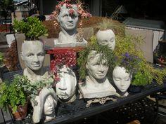 Head pots