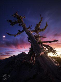 Moon & Stars - Crater Lake National Park, Oregon