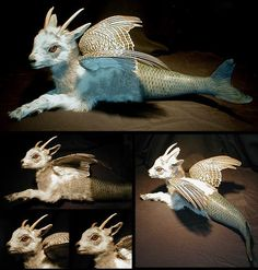 An amazing piece of taxidermy. It's the closest thing to a real Capricorn that I've ever seen <3!