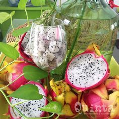 Temporada de pitaya / Dragon fruit season