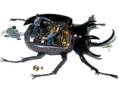 Micromachina: Real Insects Become Miniature Machines