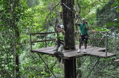 Costa Rica cloud forest tree platform