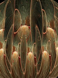chambers,  pure fractal flame by Cory Ench