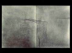 laurent millet, wire sculpture photographed