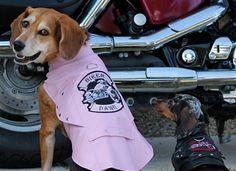 Biker Dawg Motorcycle Jacket - Pink